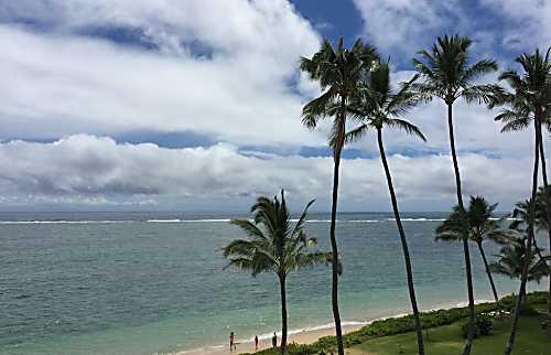 Blue Hawaii Paradise