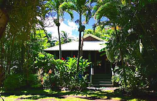 Hana Ocean Palms Bungalow