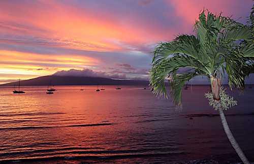 Maui Rainbows And Waves