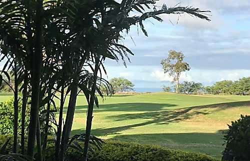 Waikoloa Villas Rental