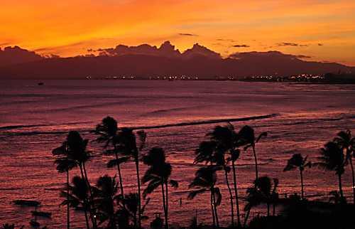 Diamond Head Beach Hotel 1102