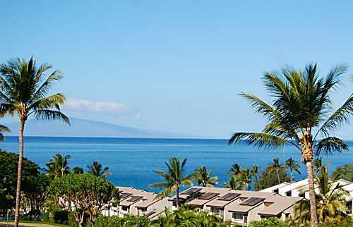 Maui Kamaole #J-217