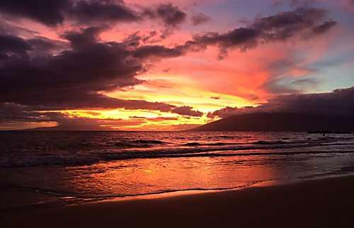 Maui Parkshore 412