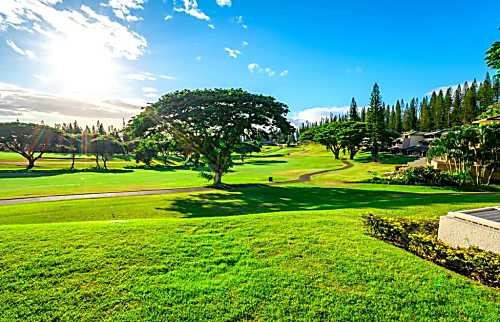 Kapalua Golf Villas KGV-16P3