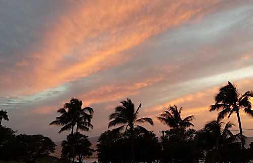 Maui Parkshore 411