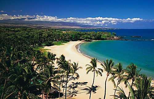 Red 'Ohana 2BD, Waimea Hawai'i