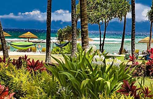 Ocean Villas at Turtle Bay 106