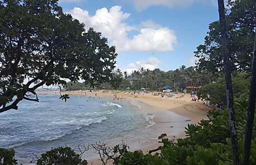 Hawaiian Haven on the Green.