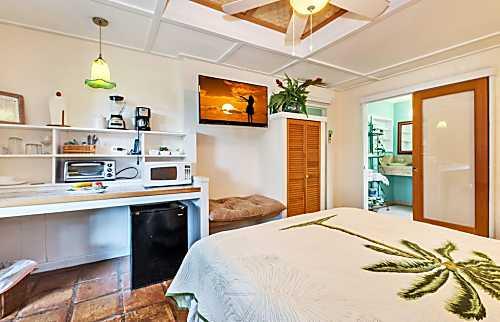 Sheffield House Ginger Studio