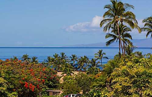 """Paradise Found"" Maui Style"