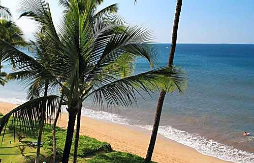 Sugar Beach Resort 519