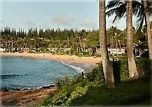 Napili Shores C121