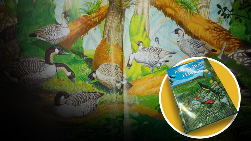 Extinct Birds of Hawaiʻi