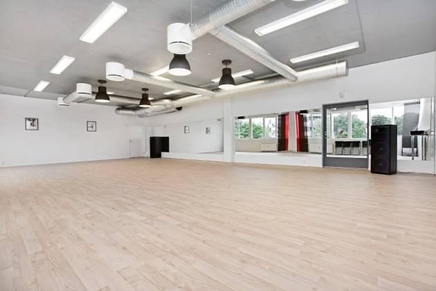 Danseløvene - Fleksible saler