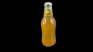 267 - fritz-spritz bio-apfelsaftschorle 0,2l