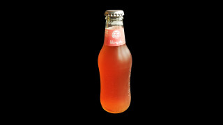 268 - fritz-spritz bio-Rhabarbersaftschorle 0,2l