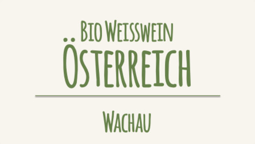 Nikolaihof Grüner Veltliner Federspiel Im Weingebirge