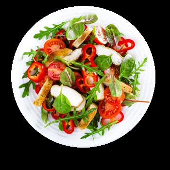 Salat Nuevo