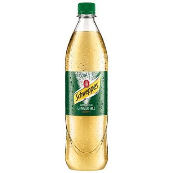 Schweppes Ginger Ale 0,75l
