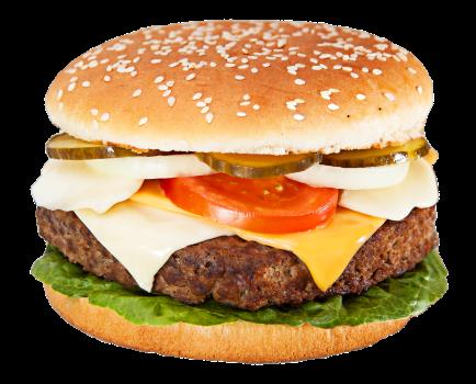 Cheesburgh Burger<sup>SR,K,F</sup>