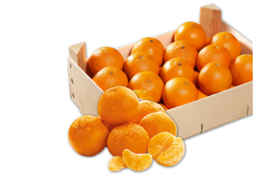 Mini-Clementine