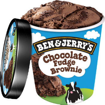 Ben & Jerry's Chocolate Fudge Brownie [100]