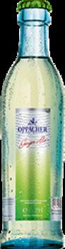 0,25 l Ginger Ale