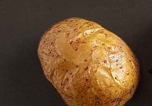 Extra Ofenkartoffel