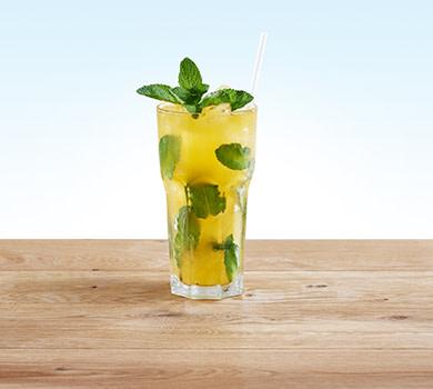 Durstlöscher Mango-Minze 0,5l