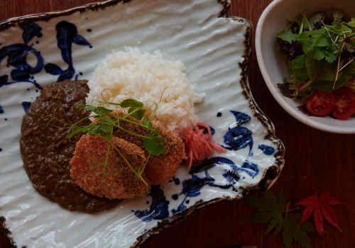 Shake Katsu Horenso Curry