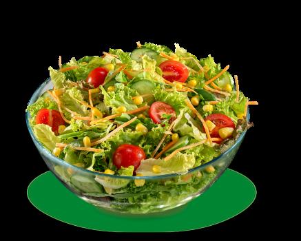 Salat Basis