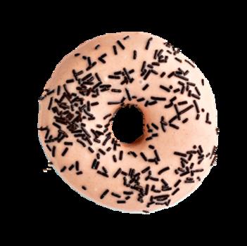 Lesley Donut