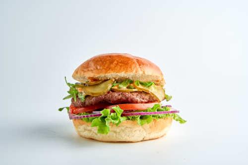 Visionburger-Hamburger
