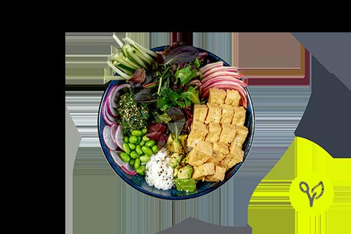 Pokebowl mit Tofu (vegan)