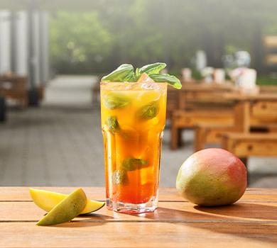 Durstlöscher Mango-Kranbeere-Basilikum 0,5l