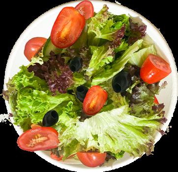 Haussalat