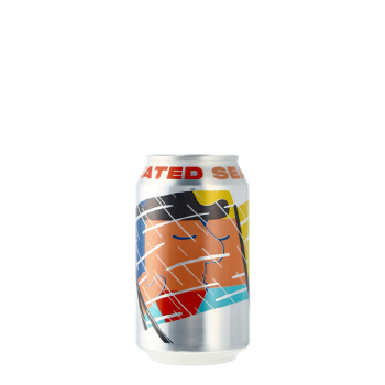 Heated Seats Pale Ale 0,33l Canned Beer