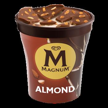 Magnum Mandel 440ml