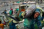 South China Sea: Chinese Ship Sinks...