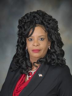 Karen Elizabeth Porter County Council 8