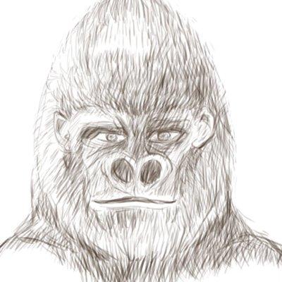Virtual_Gorilla(バーチャルゴリラ)