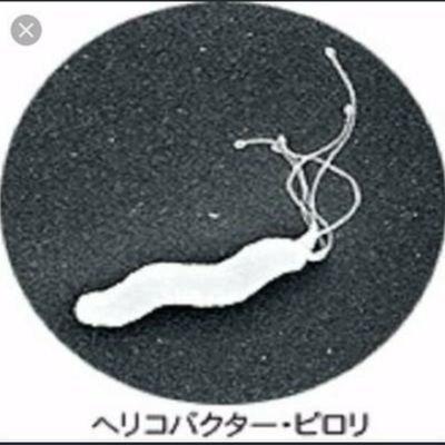 ピロリ菌。