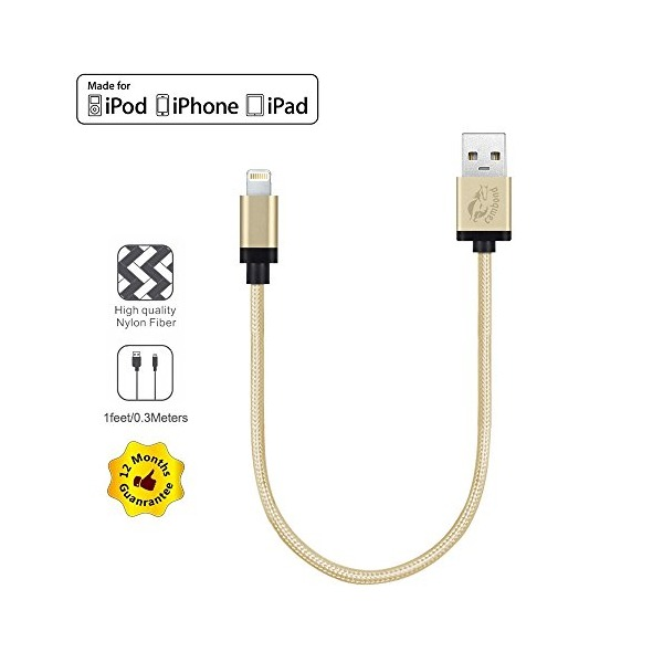 Perfect Size for DJI Inspire 1& Phantom 3 Remote Control with iPad Air, Mini, Cambond® 1feet / 0.3M Element Series 8-pin USB SYNC Cable Charger Cord ( Solid Gold )