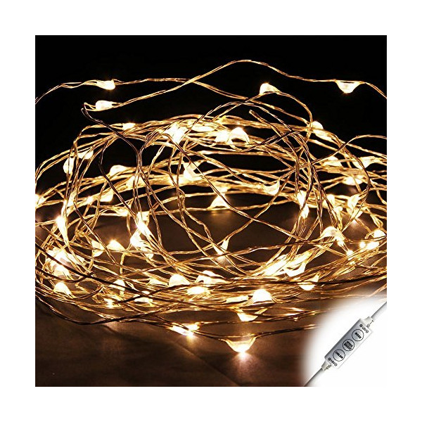 E-Age 10m 12V 100 LEDs Copper Wire LED Starry light 33ft LED String Light + Power Adapter + Mini Dimmer (Warm White)