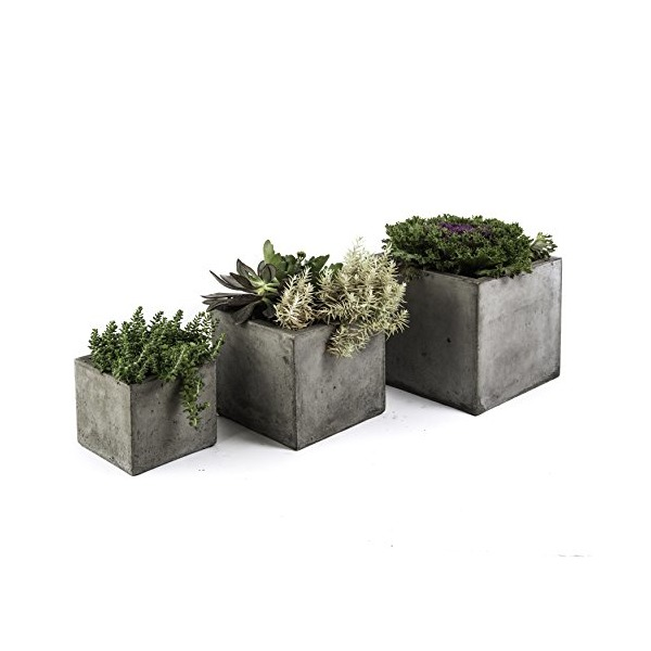 Repose Cubo Succulent Planter, Set of 3