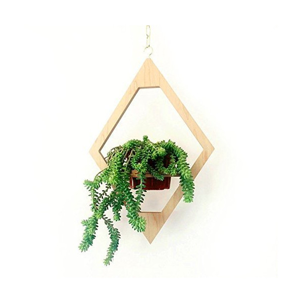 Jungalow Hanging Planter