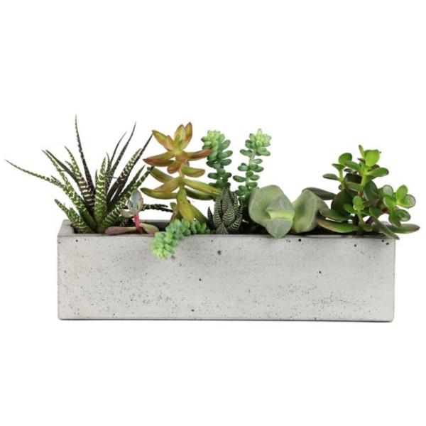 Scoutmob Home Concrete Windowsill Planter