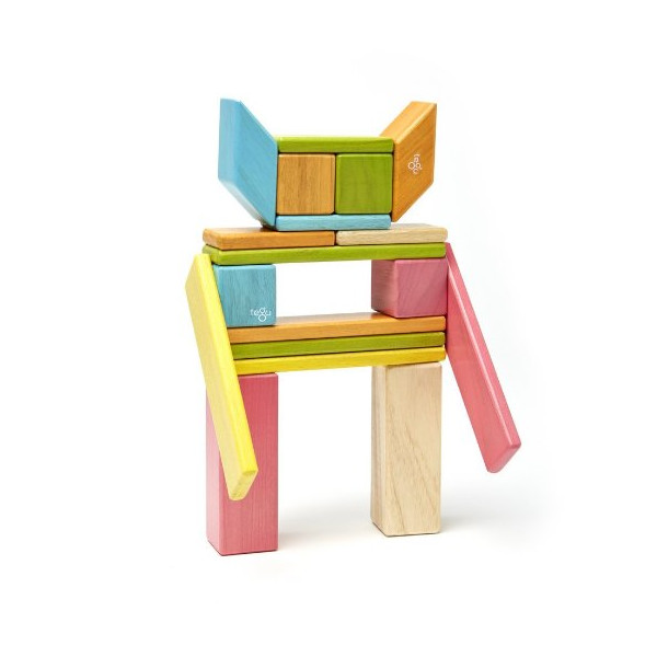 22 Piece Tegu Endeavor Magnetic Wooden Block Set, Tints