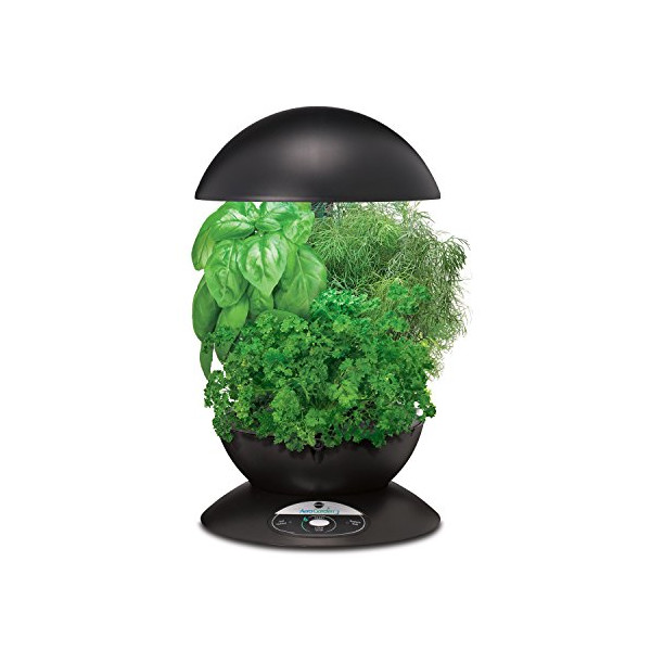 Miracle-Gro AeroGarden 3-Pod Indoor Garden with Gourmet Herb Seed Kit, Black