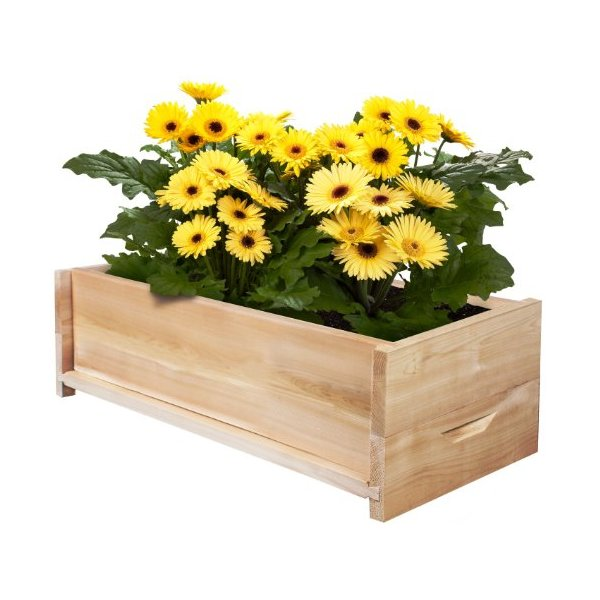 Greenes Cedar Patio Planter Box 24""